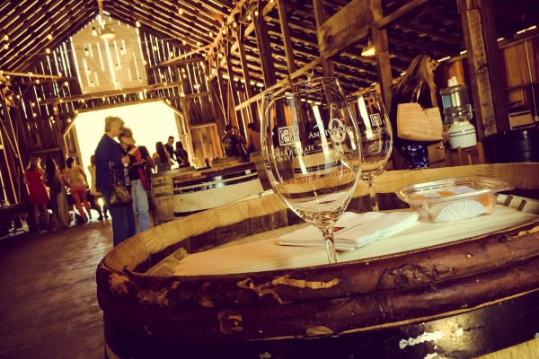 Halter Ranch wine tasting | photograph by Brian J. Matis
